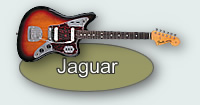 Fender Jaguar Section